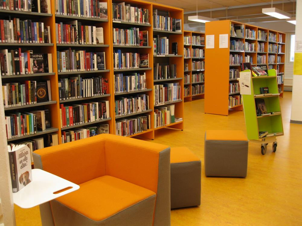 Viitasaaren kirjasto